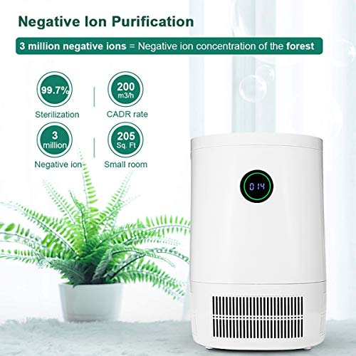 Buy Discount GXLO Air Purifier Disinfection and Sterilization, with Filter Large Room Air Cleaner, f...