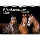 Pferdezauber Deluxe 2020 Calendrier de Noël Format A4 avec 1 carte de vœux et 1 carte de Noël