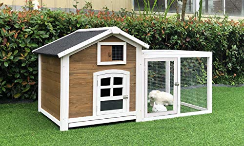 Rabbit Hutch Amazon