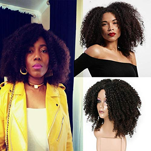 serliy Brown synthetische lockige Perücken für Frauen kurze Afro Perücke African American Natural