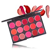 FantasyDay Pro Matte 15 Colors Non-Sticky Lip Gloss Palette Lipgloss Makeup Kit Cosmetic Contouring Palette