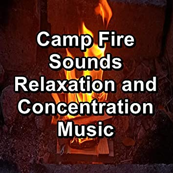 Camp Fire Sounds Relaxation and Concentration Music