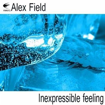 Inexpressible Feeling