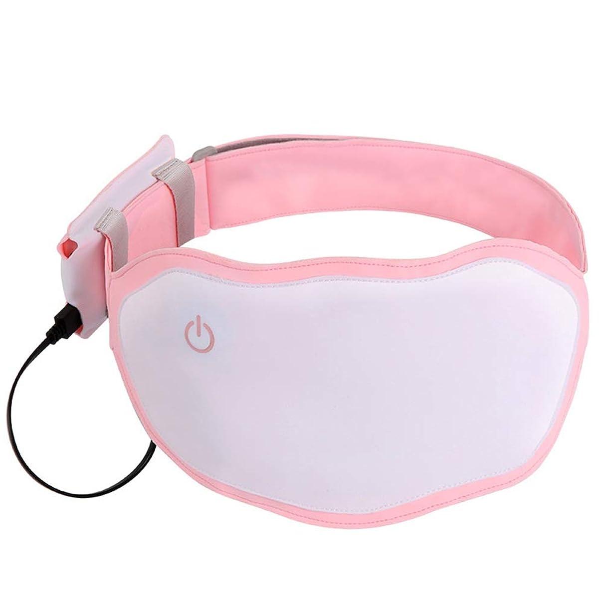 畝間速い五ウエストバックの首の痛みを軽減するための電気暖房ウエストパッドポータブル温暖ベルト 腰痛保護バンド (色 : ピンク, サイズ : Free size)