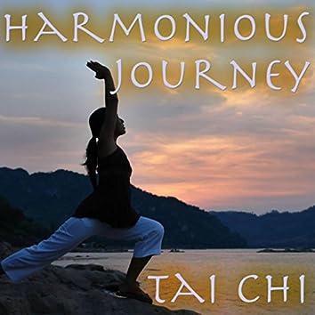 Harmonious Journey