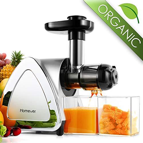 Entsafter Gemüse und Obst, BPA-frei Entsafter Slow Juicer Profi Juicer Ausgestattet mit Einem Geräuscharmen Motor&Saftkanne & Reinigungsbürste Überspannungschutz&