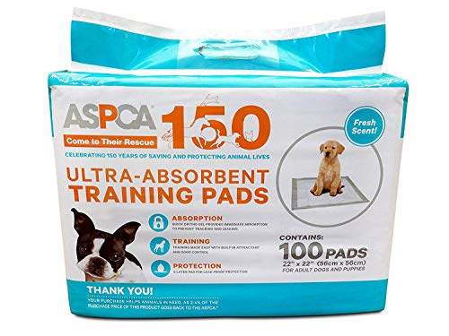 Puppy Pads 100 Count