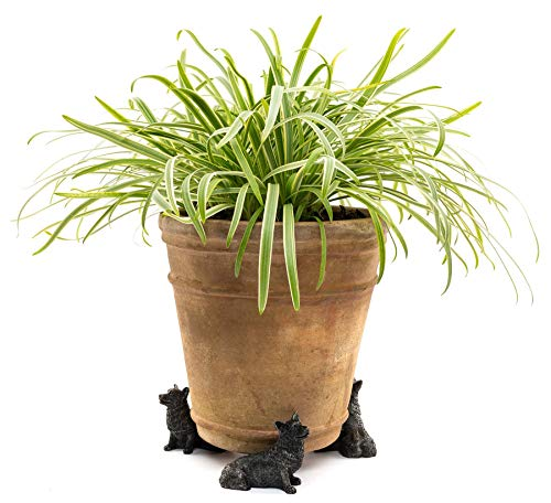 Potty Feet Corgi Dog Figures Plant Pot Feet - Planter Support - Handmade Decorative Ornaments - 3pcs