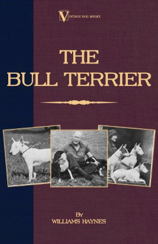 The Bull Terrier (Vintage Dog Books Breed Classic) (English Edition)