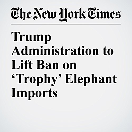 Trump Administration to Lift Ban on 'Trophy' Elephant Imports copertina