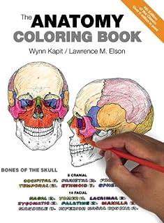 Kapit, W: Anatomy Coloring Book