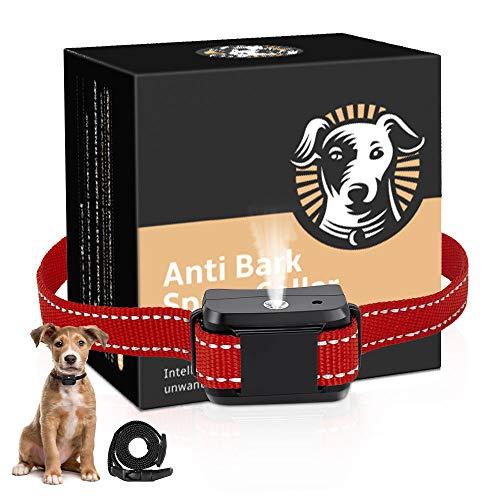 Dog Training Collar, Dog Bark Collar for Small Medium Large Dogs,...