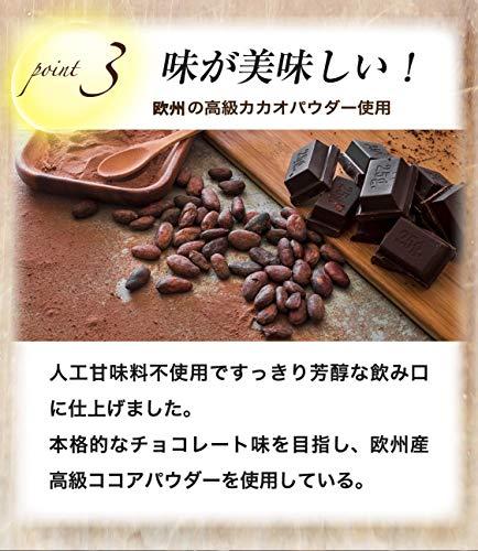 『REVOPRO(レボプロ) EGG WHITE PROTEIN (卵白プロテイン) チョコレート味 1kg』のトップ画像