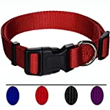 AEDILYS Adjustable Nylon Dog Collar Classic Solid Colors for Small Sized Dogs Neck 11-17 inch, Red