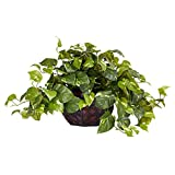 Nearly Natural 6681 15in. Pothos with Decorative Vase Silk Plant,Green,17.5' x 10.125' x 10.125'