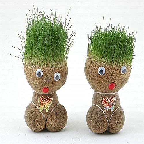MTDBAOD Mini Bonsai Head Grass Doll, Funny Fast Growing Grass Head Doll, Fish Tank Decorations Plants,for Rooms Offices and Aquarium Decorations(2pcs)