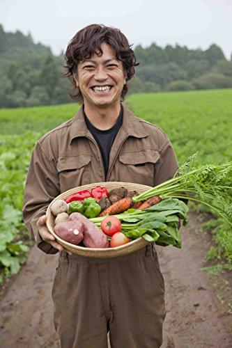 無添加離乳食オーガニックベビーフード有機無農薬のお野菜と手仕込み天然だしのBabyOrgenteほうれん草と小松菜おじやタイプ