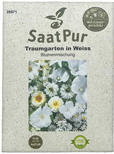 SaatPur Sommerblumenmischung Traumgarten in Weiß Samen Saatgut Sommeraussaat Blumenmix
