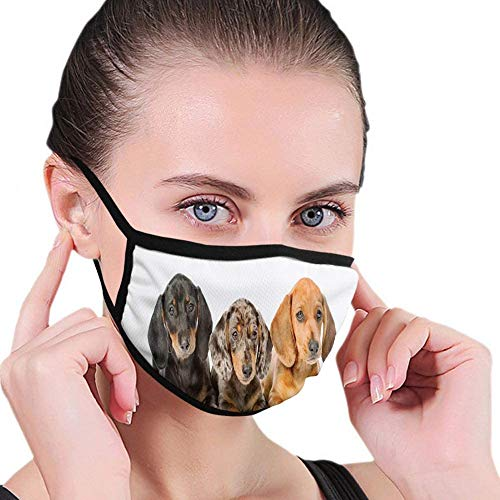 'N/A' Keregugu Comfortable Windproof Face cover,Cute Sausage Dog Puppies Lying Together,Printed Facial Decorations for man and woman