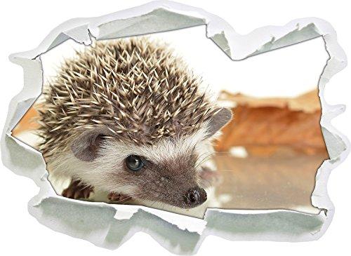 Hedgehog Sweet, Papier 3D Sticker Mural Taille: 92x67 cm décoration Murale 3D Stickers muraux Stickers