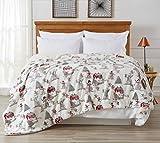 Home Fashion Designs Sherpa and Fleece Velvet Plush Blanket