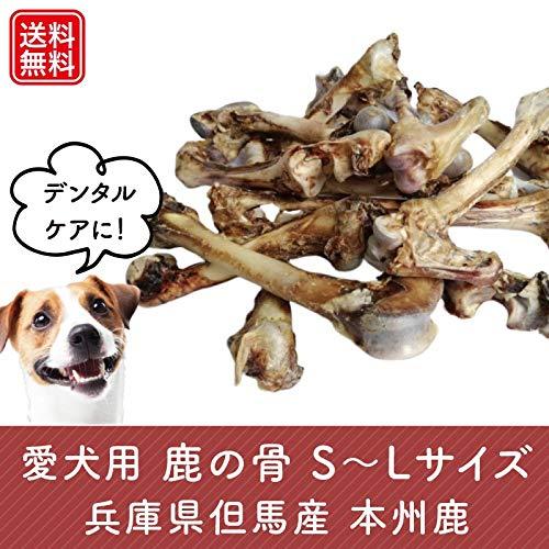 愛犬用鹿の骨 Lサイズ1本 無添加 専用パック入りで清潔・安心! 兵庫県但馬産本州鹿 (L)