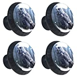 Silver Owl Sit Stump Foreat Drawer Knob Pull Handle Crystal Glass Circle Shape Cabinet Drawer Pulls Cupboard Knobs with Screws for Home Office Cabinet Cupboard 4 Pieces