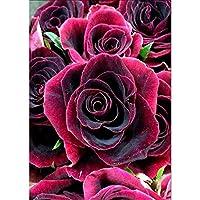 DIY 5Dダイヤモンドナンバーキットの絵画、カラフルな花の完全な家の壁の装飾のためのラインストーン刺繍クロスステッチの写真芸術品、工芸品をドリル E