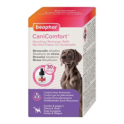 beaphar CaniComfort Nachfüll-Flakon für Verdampfer, Beruhigungsmittel für Hunde mit Pheromonen