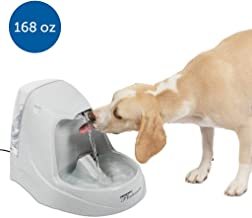 PetSafe Drinkwell Platinum or 1 Gallon Cat and Dog Water Fountain - Pet Drinking Fountain - Best for Cats and Small to Medium Dogs