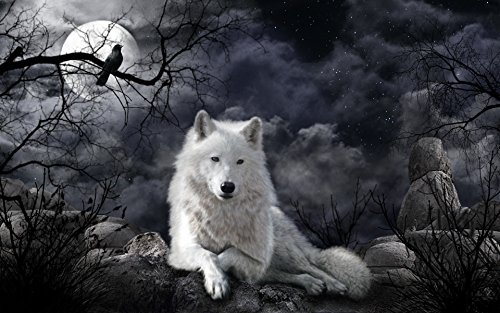 WACYDSD Jigsaw Puzzle 1000 Piece Crow and White Wolf Adult Puzzle Kids Puzzle Wooden Puzzle Toy DIY Kit Home Decor 75x50cm