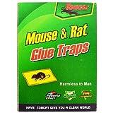 Tom Cat Trampa para ratones y ratas, forma efectiva de atrapar ratones,...