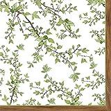 R2S 414Ntra Natura servilletas de Papel 33x 33cm Papel Blanco 19.8x 19.8x 1.5cm