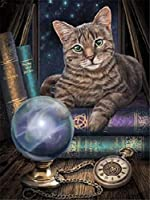 QMGLBG 5Dダイヤモンド塗装魔法の猫動物ダイヤモンド絵画クリスタルラインストーンクリエイティブクラフト家の装飾30*40cm