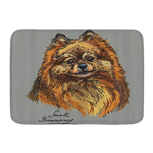 BROWCIN Bath Mat Rug Pomeranian Hand Drawn Style Sketchy of a Purebred Domestic Puppy Plush Bathroom Decor Mats with Non Slip Backing,29.5