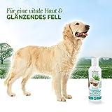 Aniforte Fellharmonie Shampoo mit Kokosöl-Extrakt & Aloe Vera 200ml Hundeshampoo Kokos-Shampoo – Naturprodukt für Hunde - 5