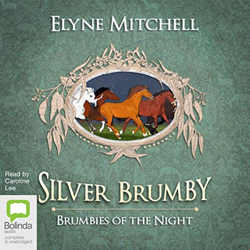 Brumbies of the Night audiobook cover art
