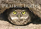 Celebrating Prairie Birds
