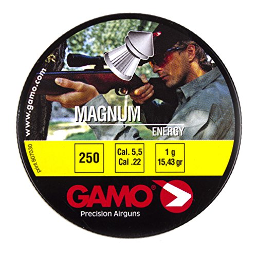 GAMO Spire Point Double Ring .22 Caliber Magnum Pellets (Tin of 250)