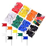 YoungRich 160 Pieces Push Pins Map Flag Board...