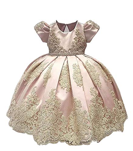 ABAO SISTER Baby Girls Flower Girl Dress Infant Princess Ball Gown Birthday Party Dresses Pink 18M