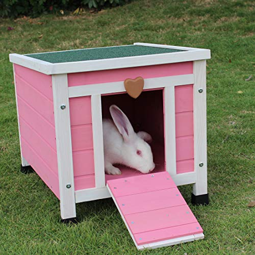 Modern Rabbit Hutch