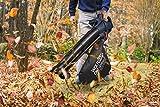 Zoom IMG-2 wolfgang soffiatore elettrico giardino aspiratore