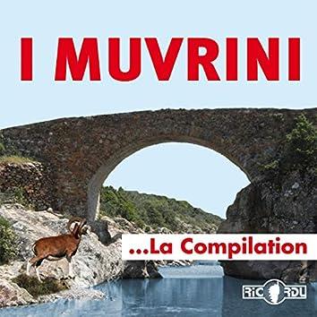 I Muvrini, la compilation