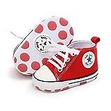 Babycute - Zapatillas de lona para bebé con suela suave y cordones, informales, para niños y niñas, primeros pasos, color Beige, talla 12-18 meses