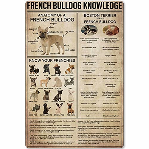 Metal Sign French Bulldog Knowledge Anatomy of A French Bulldog Tin Poster Guide Plaque Decoration Farm Club Home Kitchen Bar Cafe Wall 8x12 Inches