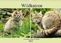 Wildkatzen - Die lautlosen Jaeger des Waldes (Wandkalender 2022 DIN A3 quer): In unseren Waeldern ist die Wildkatze wieder zuhause (Monatskalender, 14 Seiten )