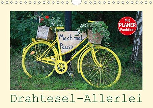 Drahtesel-Allerlei (Wandkalender 2020 DIN A4 quer): Fahrrad-Variationen – von ALT bis NEU ist alles dabei, mit PLANER-Funktion (Geburtstagskalender, 14 Seiten ) (CALVENDO Mobilitaet)