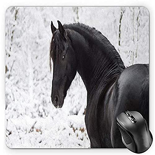 Muis Pad Paardensport Muis Pad, Zwart Friese Sport Paard Portret Op Een Sneeuwachtige Winter Achtergrond Nieuwigheid Afbeelding, Standaard Grootte Rechthoek Antislip Rubber Mousepad, Wit 25X30Cm