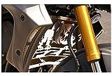 protección de radiador para Yamaha 800 FZ8 and FZ8 Fazer 1016 design 'Bulldog' + alambrera dorada